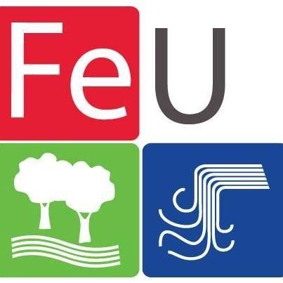 Fe University.jpg
