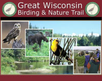 great-wi-birding-trail.jpg