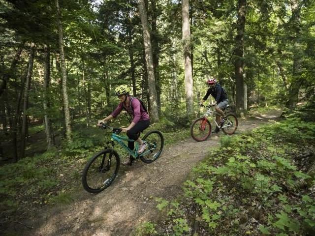 box-discovery-bike