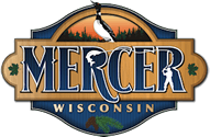 https://mercercc.com/2016/wp-content/uploads/2019/02/cropped-mercer-logo-125.png